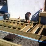 Deck(3)